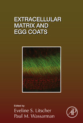 Extracellular Matrix and Egg Coats